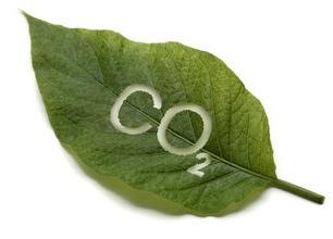 eco-malus